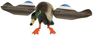 Edge Innovative Hunting Super Lucky Combo Hunting Decoy by Edge Innovative Hunting