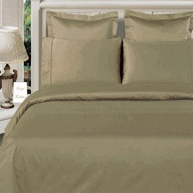 Sage Full/Queen size 100% Bamboo 4pc Comforter Cover Set