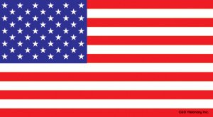 Licenses Products American Flag Sticker