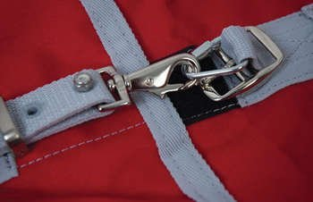 convenience-clip-cavallo-equitazione-coperta-campo-stalla