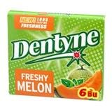 dentyne-freshy-melon-gum-204g
