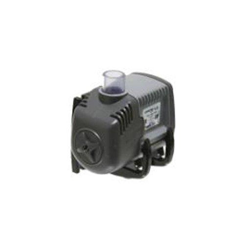 Hayward Pump Motor Replacement on Pump Motor Replacement