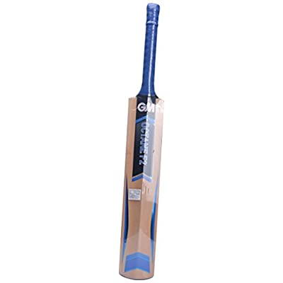 Gm Octane F2 Premier Kashmir Willow Cricket Bat (SH)