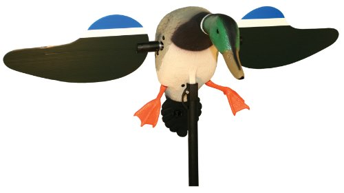Mojo Outdoors Mallard Drake Decoy