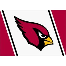 Arizona Cardinals Team Spirit Area Rug