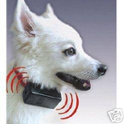 Electronic Bark Collar