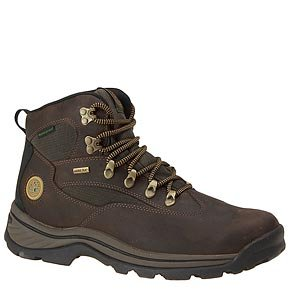 Timberland Men's Chocurua Trail GTX Boot