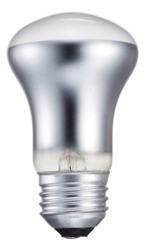 Philips 415406 Indoor Spot Light 40-Watt R16 Light Bulb