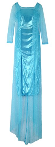 Eyekepper Frozen Snow Queen Elsa Dress Cosply Costume Adult