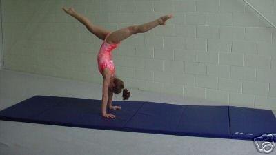 4'x12' Gymnastics Tumbling Martial Arts V4 Folding Mat