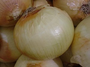Onion Texas Early Grano Dgs30105A (White) 200 Organic Heirloom Seeds By David'S Garden Seeds