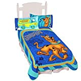 Warner Bros. Scooby Doo a Funny Scooby Micro Raschel Blanket, Twin Size