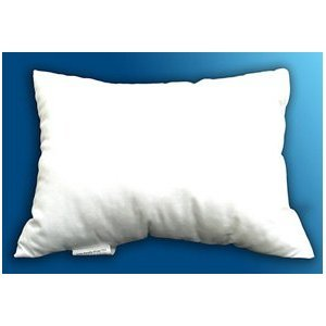 Check Out This 16x26 Pillow Form Insert Lumbar PC