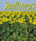 Sunflowers (1560654899) by Gail Saunders-Smith
