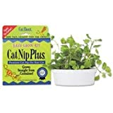 Cat-A'bout Single-Cat CatNip Plus Tub 60 grams by MiracleCorp/Gimborn