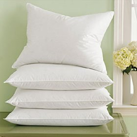 Marriott Pacific Coast Down Surround Standard Pillow