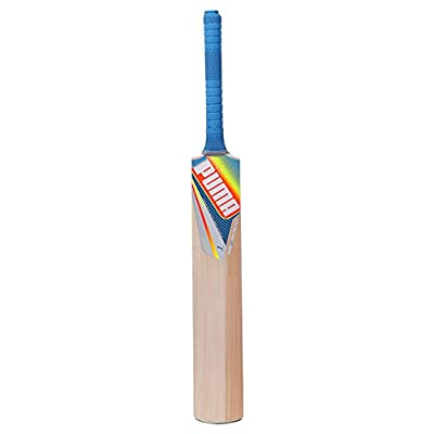 Puma evoSPEED GTR Kashmir Willow Cricket Bat Sh (89366801)