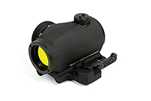 Amazon.com : Aimpoint Micro T-1 (2 MOA) with A.R.M.S. #31 Throw Lever