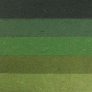 RAYHER - Papier-Set DIN A3 Grün-Töne, SB-Btl. 5 Stück verschiedene Farbtöne