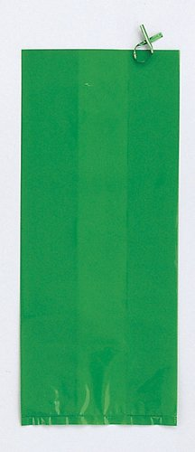 Green Cello Treat Bags - 20/Pack (9in.x4in.)
