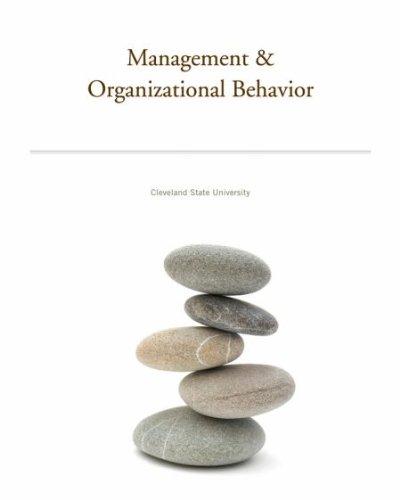 organizational action organization book