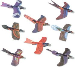 12 Piece Bird Glider Assortment [Toy]