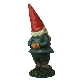 THE Garden Gnome 10