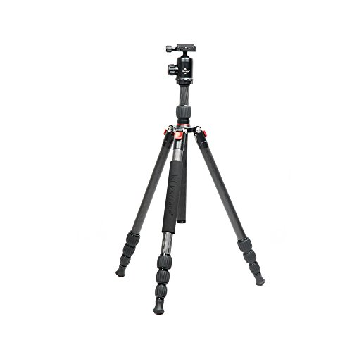 marsace-bt-1541t-pro-tripod-with-eb-1-ball-head-and-b61-quick-release-plate-package-for-camera