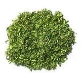 Coriander Leaves (Cilantro) - Grade A Premium Quality
