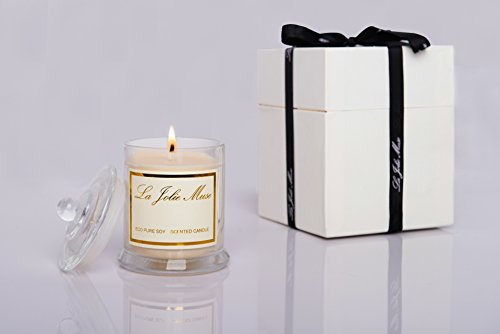 Eco pure soy plumeria scented jar candle home fragrance for Long lasting home fragrance