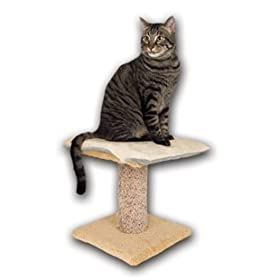 K&H Pet Products 12-Inch by 16-Inch Cat Bed Thermo-Kitty Furniture Warmer