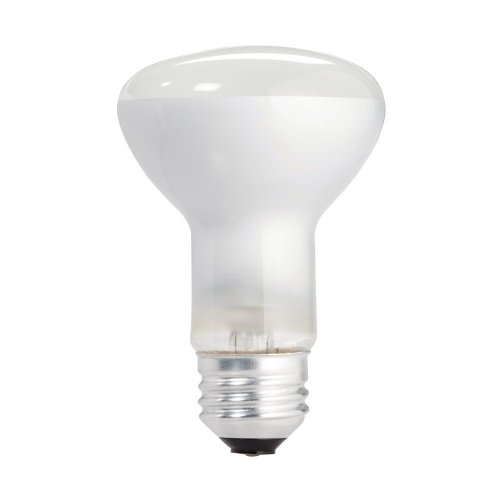 Philips 223115 Soft White 45-Watt R20 Indoor Flood Light Bulb, 12-Pack (Kitchen Light Bulbs compare prices)