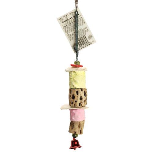 Polly'S Cuttlebone Secrets Bird Chew Toy, Medium