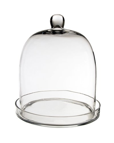 Glass Cloche, 11 inches Height Plant Terrarium. (1 pc)