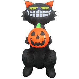 5.5 Ft Standing Cat Holding Pumpkin Airblown Halloween Inflatable front-809195