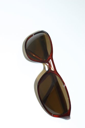 Gargoyles Stampede Sunglasses (Brown Frame with Bronze Lenses)