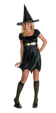 Enchanting Witch Adult Witch Halloween Costume