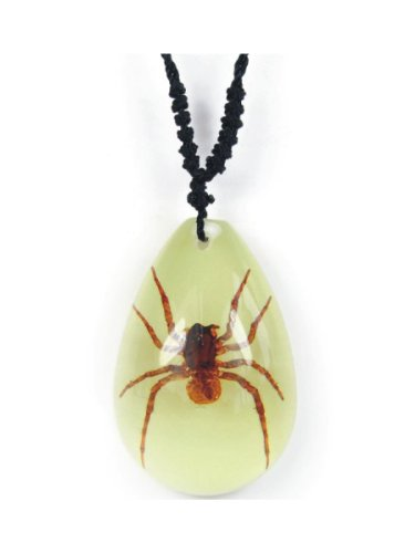 Real Brown Recluse Spider Necklace Small Teardrop Glow in the Dark (Real Insect Company Necklace compare prices)