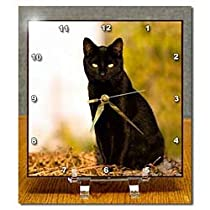 Cats - Black Cat - Desk Clocks