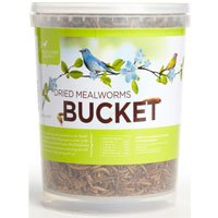 Image of Pacific Bird & Supply Co. Dried Mealworm Bucket (B008EXGBTO)
