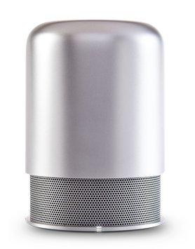 Silver Hiddenradio Portable Bluetooth Speaker And Fm Radio