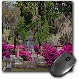 Danita Delimont - Cemetery - USA, Georgia, Savannah, Azaleas and headstones in Bonaventure Cemetery - MousePad (mp_206051_1)