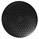 """LapWorks 10"""" Heavy Duty Swivel With Steel Ball Bearings for Indoor/Outdoor Use With Flat Panel Monitors Tv"""