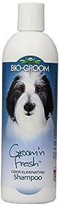 Bio-Groom Groom 'N Fresh Dog and Cat Conditioning Shampoo, 12-Ounce