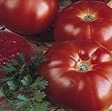 Super Beefsteak (Heirloom) Tomato 200 Seeds By Jays Seeds Upc 643451294613
