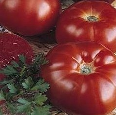 Super Beefsteak (Heirloom) Tomato 200 Seeds By Jays Seeds Upc 643451294613 (Beefsteak Tomato compare prices)