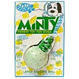 Pet Brands Large Minty Fresh Rubber Ball
