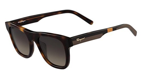 Salvatore Ferragamo - SF824S, Geometrico, acetato, uomo, DARK HAVANA/GREY SHADED (214 ), 51/21/150