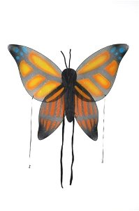 Wings Child Butterfly Orange Accessory