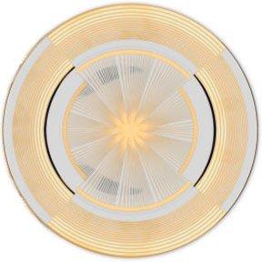 Haviland Cible Dinner Plate